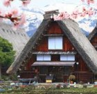 Shirakawago tour (8 hours)
